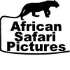 African Safari Pictures Logo